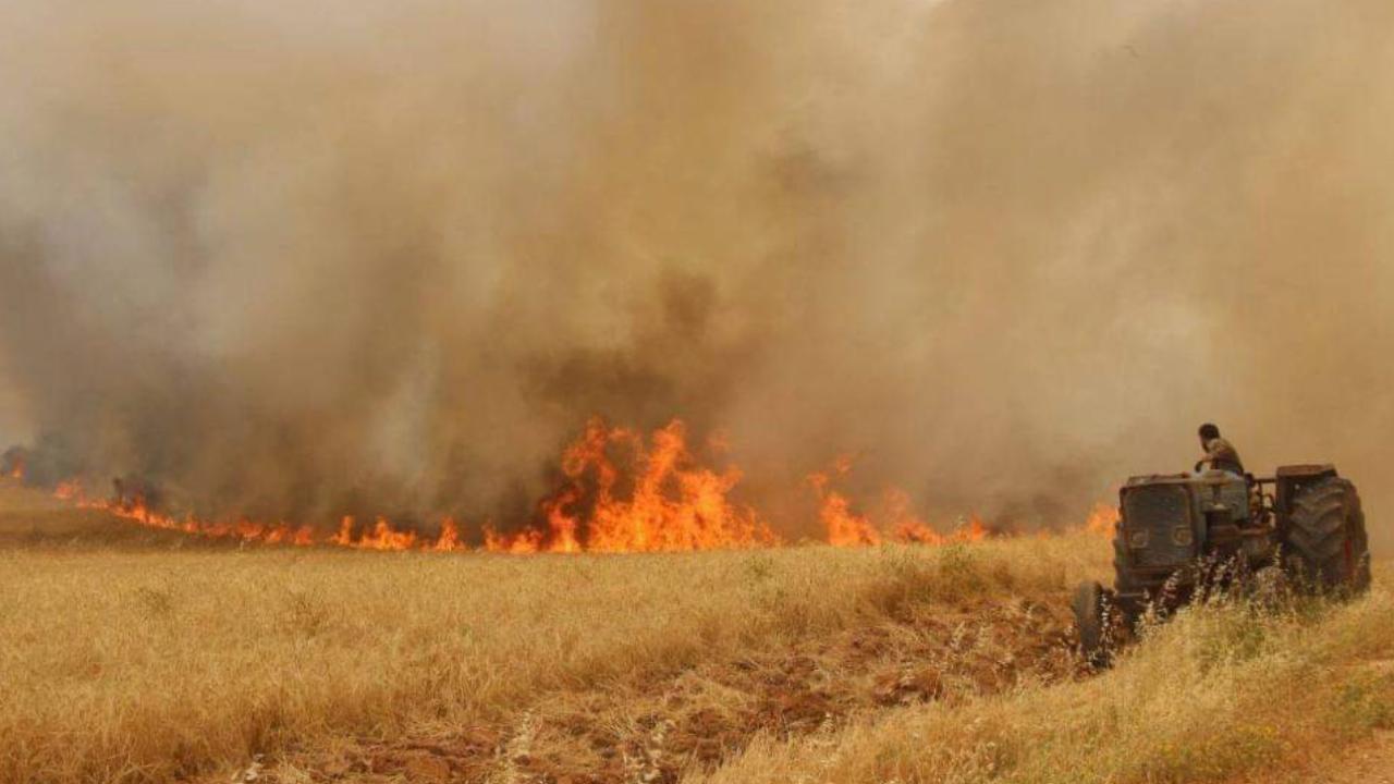 Photo of مقاطعة الحسكة تصدر عدة قرارات للحد من حرائق المحاصيل