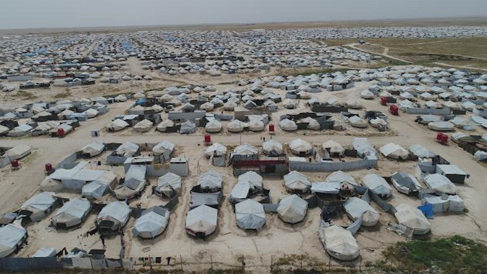 صورة 71 ألف نازح في مخيم الهول وأوضاعهم تتجه نحو السوء