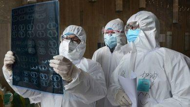 Photo of دراسة تؤكد انتهاء الوباء في الدول العربية خلال شهري أيار وحزيرات المقبلين