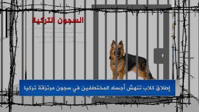 Photo of إطلاق كلاب تنهش أجساد المختطفين في سجون مرتزقة تركيا