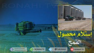 Photo of شركة تطوير المجتمع الزراعي في ديرك تستلم القمح عبر الأكياس