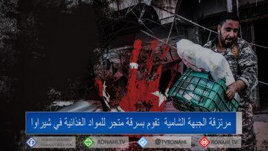 Photo of مرتزقة الجبهة الشامية تقوم بسرقة متجر للمواد الغذائية في شيراوا