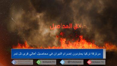 Photo of مرتزقة تركيا يعاودون إضرام النيران في محاصيل أهالي قرى تل تمر