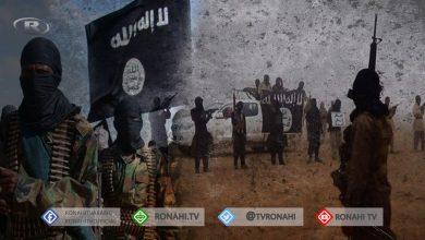 صورة اشتباكات بين عناصر داعش وقوات الحكومة في البادية السورية