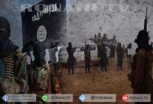Photo of أكثر من 50 قتيلاً باستمرار الاشتباكات بين قوات الحكومة ومرتزقة داعش بالبادية السورية