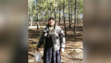 Photo of عفرين..فقدان مواطنة لحياتها وإصابة اثنين بينهم طفل إثر اشتباكات بين المرتزقة وسط المدينة