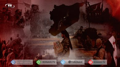 صورة قتل واختطاف وسرقة للزيتون.. الاحتلال ومرتزقة يصعدون جرائمهم في المنطقة المحتلة