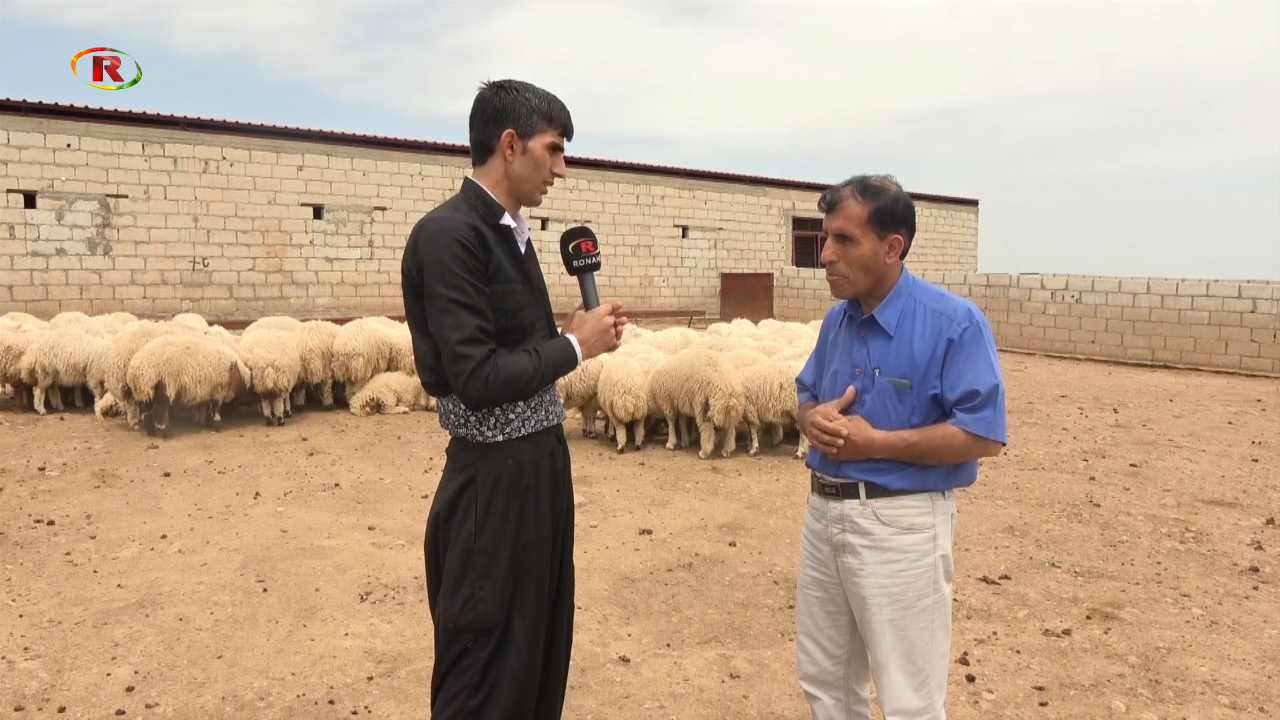 Photo of Ronahi TV – ABORÎ