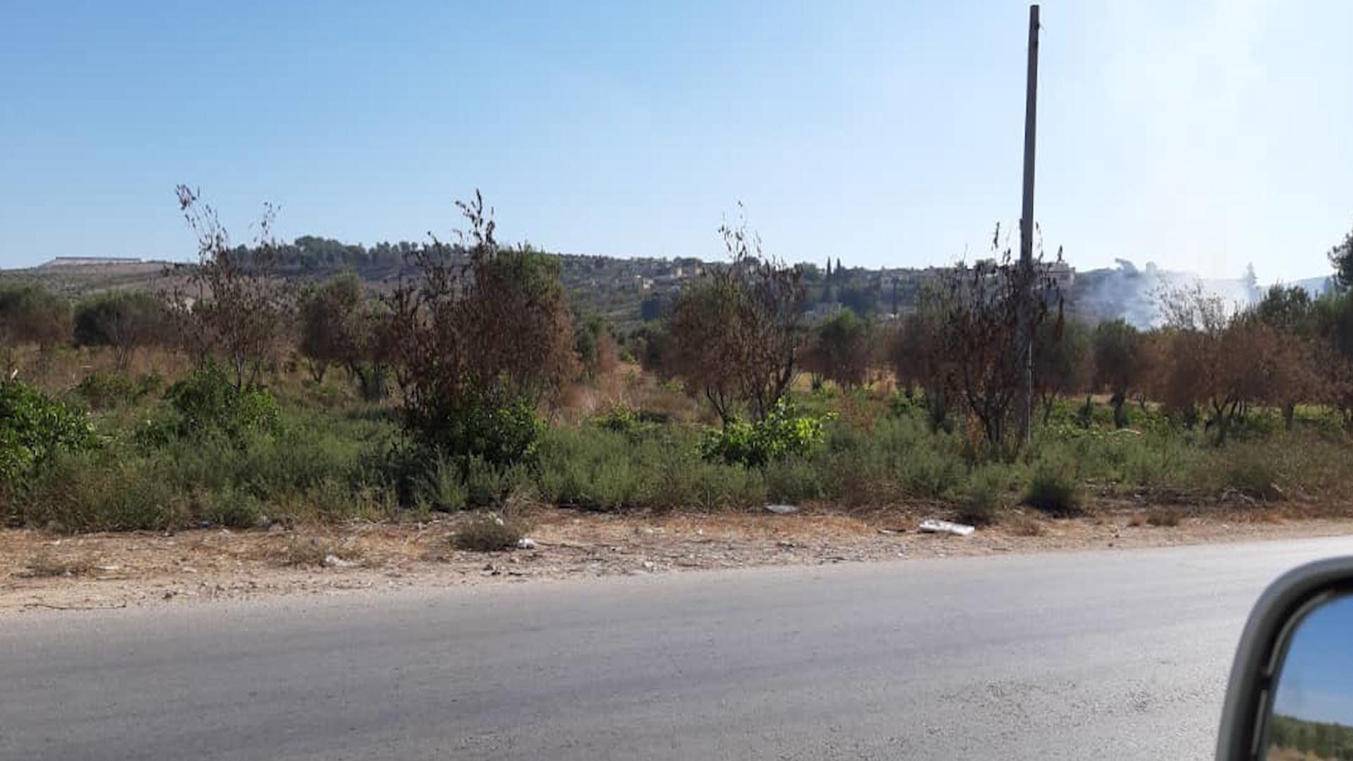Photo of Efrîn.. Çeteyan 200 darên zeytûnê yên navçeya Şerayê şewitandin