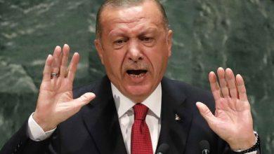 Photo of Erdogan: Wê artêşa Tirk bi hemû hêza xwe li dijî êrîşên Rêjîmê xwe biparêze