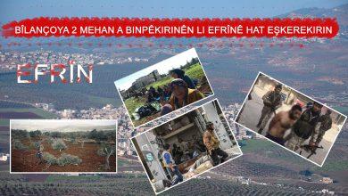 Photo of Bîlançoya 2 Mehan a binpêkirinên li Efrînê hat eşkerekirin