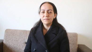 Photo of Ruşîn Mehmud: Bikaranîna şaş a xwezayê jîngeh ber bi tunebûnê ve bir