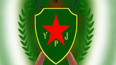 Photo of YPJ:Zayîna Rêber Ocalan, ji nû ve pênaseya civakê ye
