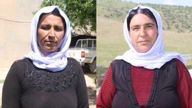 Photo of Jinên Şengalê: Divê Kurd li dijî hemû êrîşan bibin yek