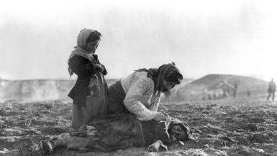 Photo of Partî, sazî û komeleyan diyar kirin ku Tirkiyê zihniyeta qirkirinê didomîne
