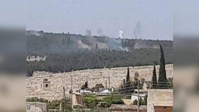 Photo of Dagirkeriya Tirk zevî û daristanên Şêrawa dan ber agir