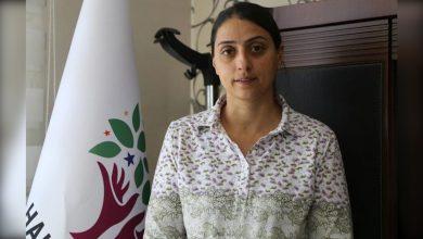 Photo of Feleknas Uca: Divê em li hemberî êrîşên li ser Kurdistanê bibin yek