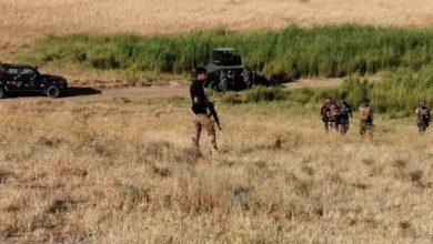 Photo of DAIŞ gelek êrîş pêk anîn, artêşa Iraqê jî dest bi operasyonekê li Diyalayê kir