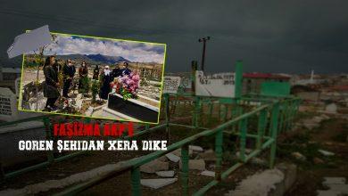 Photo of Şandeyek HDP û DBP'ê çûn goristana Geverê