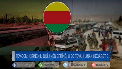 Photo of TEV-DEM: Kirinên li dijî jinên Efrînê, ji bo tevahî jinan heqaret e