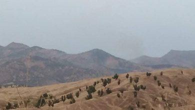 Photo of Artêşa Tirk gundên Biradostê topbaran kir