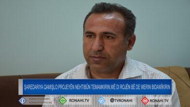 Photo of Şaredariya Qamişlo: Projeyên nehtibûn temamkirin, wê di rojên bê de werin bidawîkirin