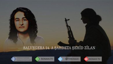 Photo of Salvegera 24. a şehadeta Zeyneb Kinacî (Zîlan)
