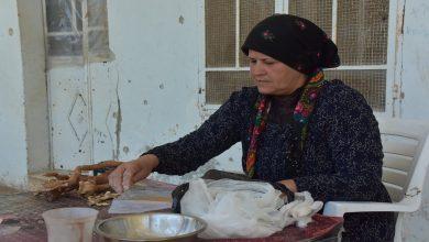 Photo of Malbatek Efrînî bi bijîşkiya xwezayî êşên pişt û romatîzmayê derman dikin