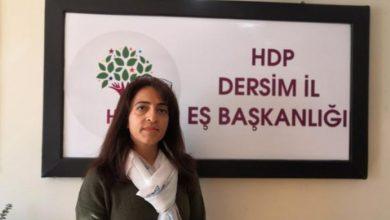 Photo of Meclisa Jina ya HDP'ê, sibe wê çalakiyekê ji bo Gulîstan Dokû li dar bixin