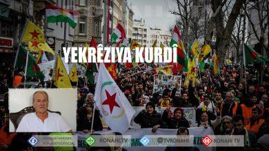 Photo of Mihemed Heyder: Avakirina Yekîtiya Kurd wê armancên Kurdan bi cih bîne