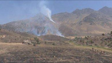 Photo of Balafirên şer ên dagirker herêma Balekayetî ya Helgûrt bombebaran kir