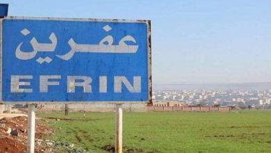 Photo of Li Efrînê çeteyên Tirk madeyên hişbir diçînin û difiroşin