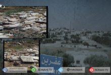Photo of Li Efrînê çeteyan gorên şêniyên gundê Şêxorzê wêran kirin