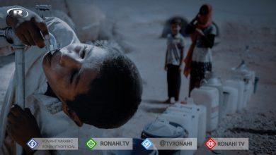Photo of Ji projeya El-Hime ya li Hesekê dest bi dayîna avê hat kirin