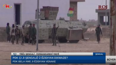 Photo of Tîrêj Şengalî: Rewabûna me ne PDK'ê diyar dike
