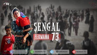 Photo of Salvegera 6. a Fermana 3'yê Tebaxê