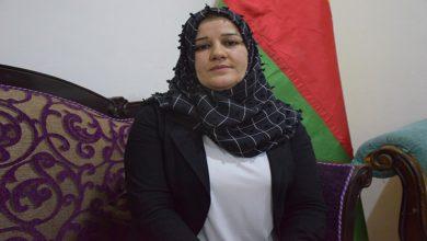 Photo of Şerîn Hemê: Divê hemû partiyn Kurd û bêkhatiyên herêmê li hember dewleta Tirk bisekinin