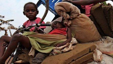 Photo of Li Kongo di nava 6 mehan de, 1300 kes li ser destê çekdaran hatine kuştin