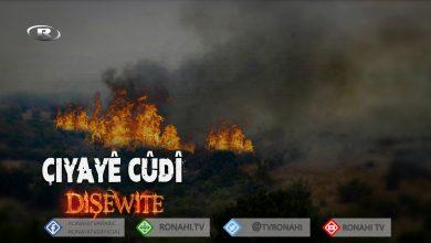 Photo of Li Çiyayê Cûdî yê Şirnexê careke din agir bi daristanê ket