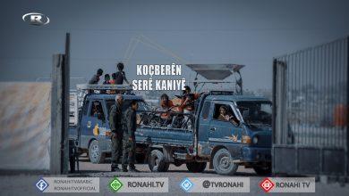 Photo of Koçberên Serê Kaniyê: Divê NY û rêxstinên mirovî alîkariyê bidin kampê
