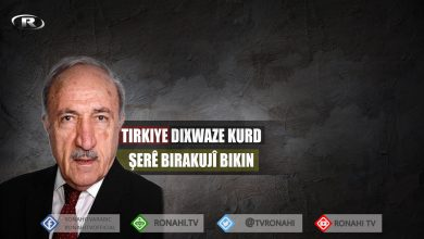 Photo of Dr. Mehmûd Osman: Tirkiye dixwaze Kurd şerê birakujî bikin
