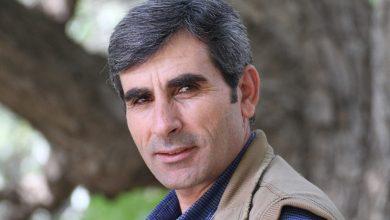 Photo of PKK'ê: Mîlîtanê pêşeng Dozdar Hemo di êrîşa hewayî de şehîd bû
