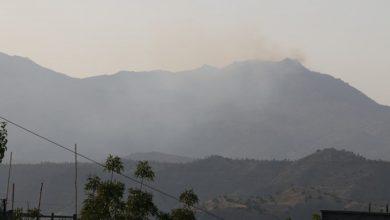 Photo of Ekolojîst: Divê ekolojîstên Tirk ji bo daristanên Kurdistanê jî helwest nîşan bidin