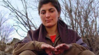 Photo of Girtiya siyasî ya Kurd Zeyneb Celaliyan di hûcreya yek kesî de dimîne