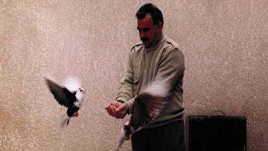 Photo of Komîteya Azadî ji bo Ocalan: Bê azadiya Ocalan bila kes li benda aştiyê nebe