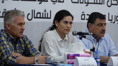 Photo of MSD'ê panela xwe ya 7'emîn li bajarê Tebqayê li dar xist